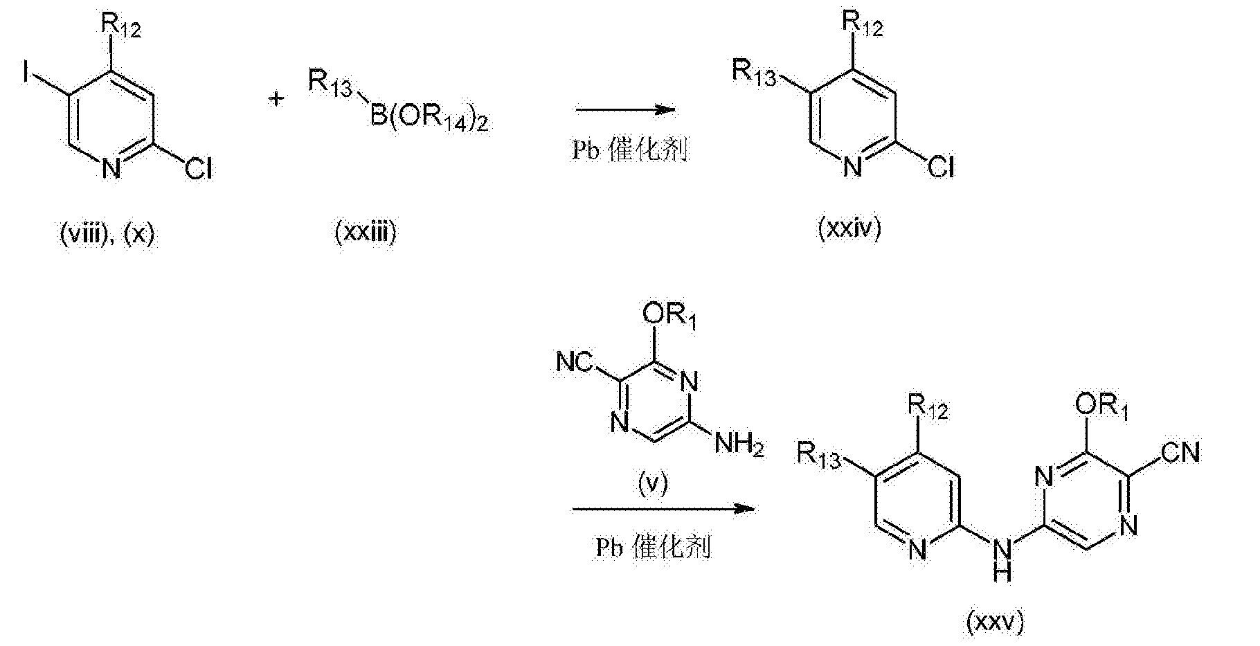 CN104105696B - 5‑(吡啶‑2‑基‑氨基)‑吡嗪‑2‑腈化合物及其治疗用途 ... 0afac4164ec5