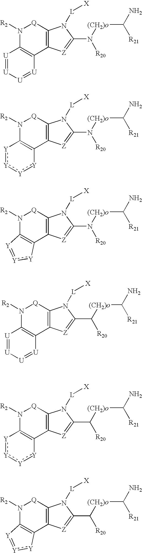 Figure US07169926-20070130-C00074