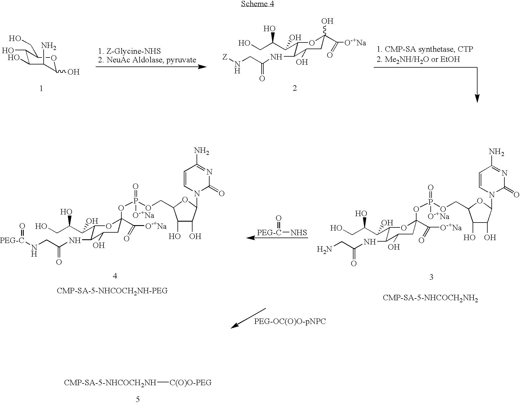 Figure US07932364-20110426-C00007