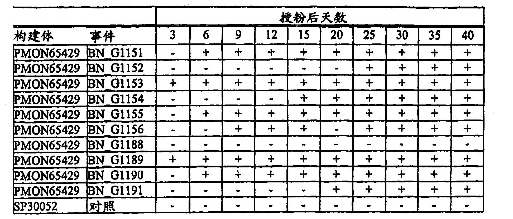 Figure CN101056983BD00191