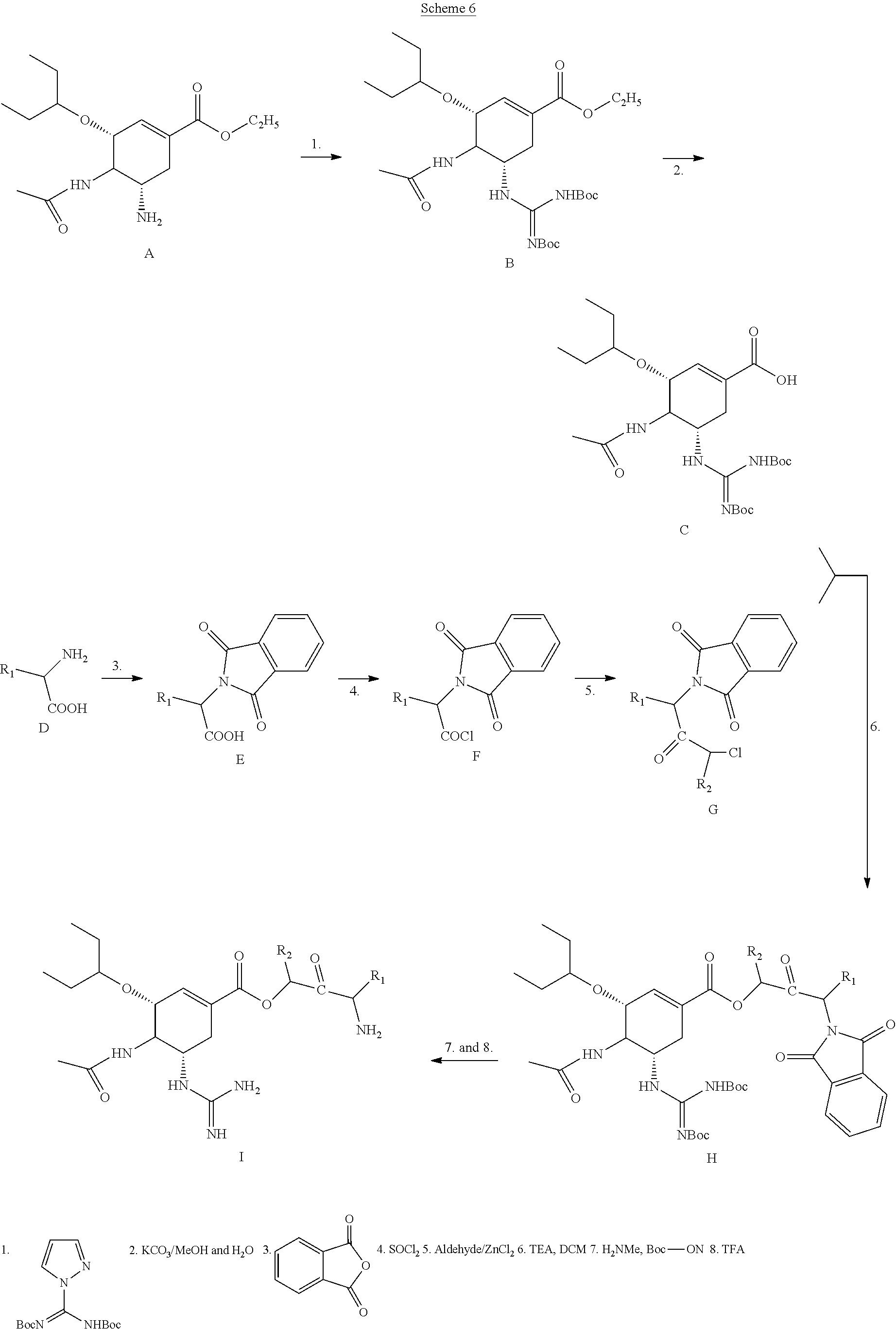 US20110160127A1 - Prodrugs of Neuraminidase Inhibitors - Google ...