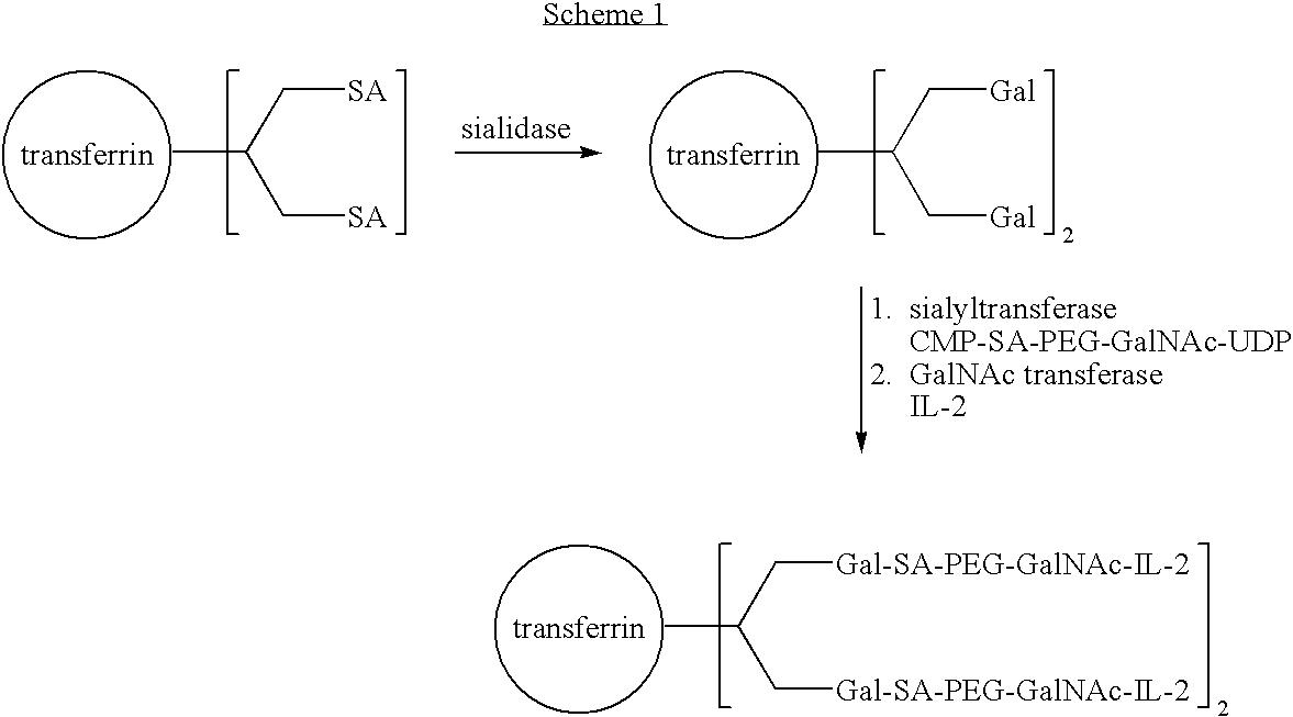 Figure US07439043-20081021-C00018