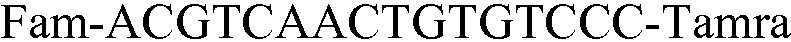 Figure 112009041310967-PAT00008