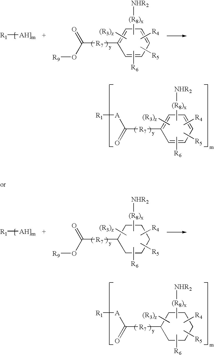 Figure US20050004325A1-20050106-C00031