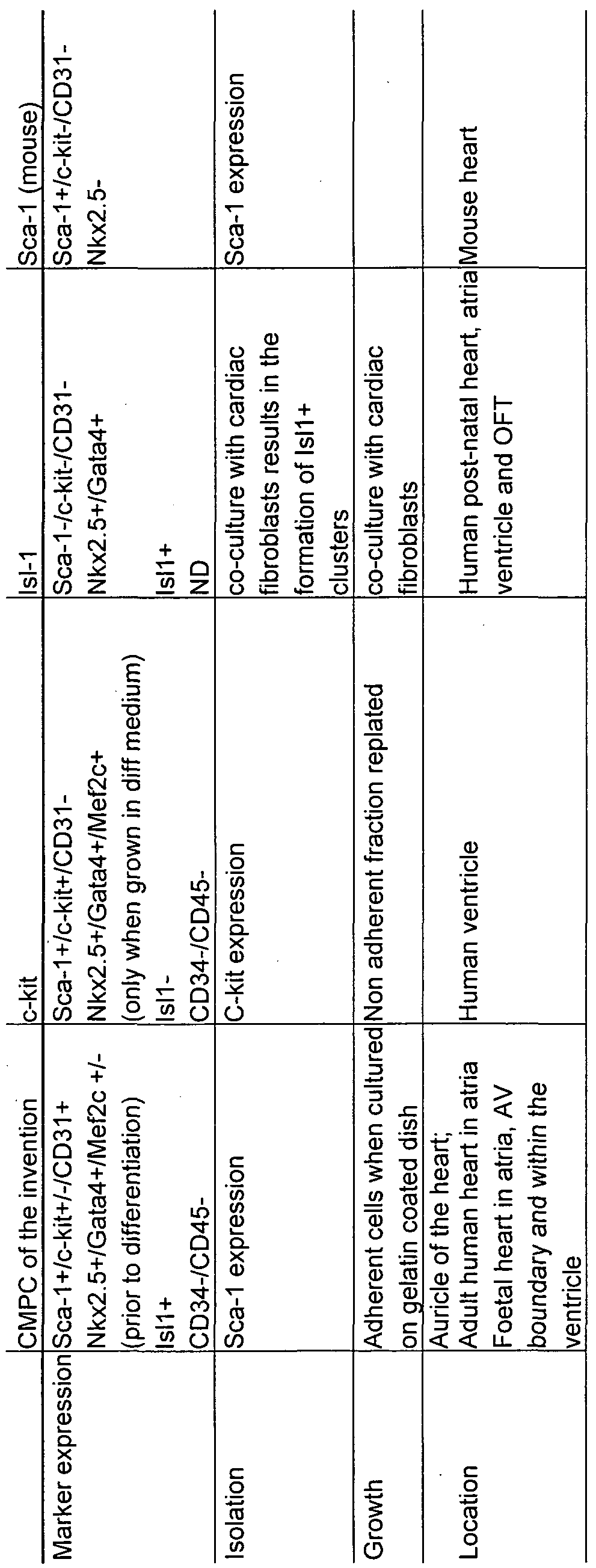 WO2008083962A1 - Provision of new cardiomyocyte progenitor cells and