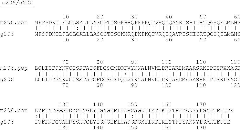 Figure US07576176-20090818-C00021