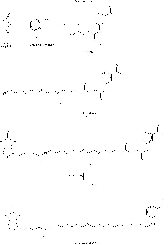 Figure US07060441-20060613-C00040