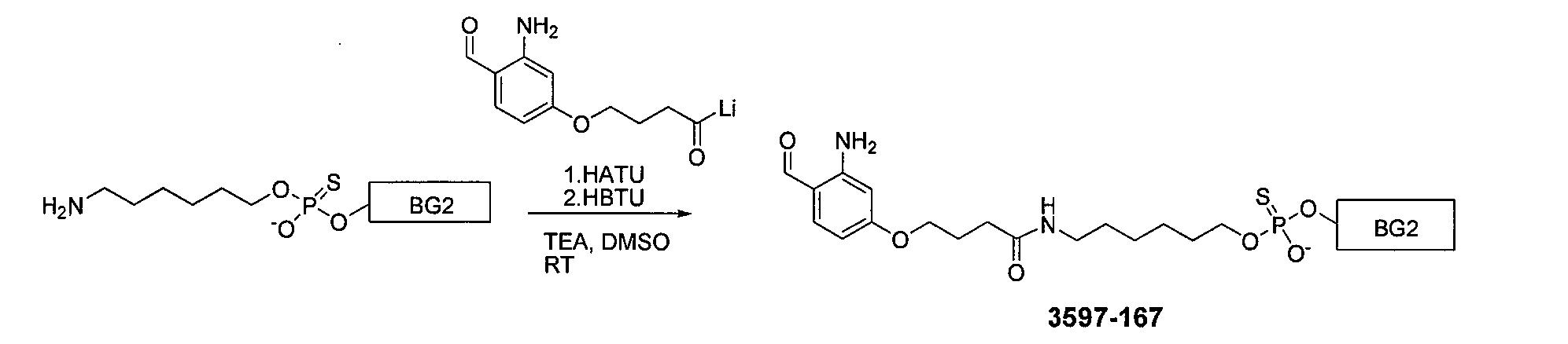 CN102264697A - Pyrroline produced biosynthetically - carboxy ... on
