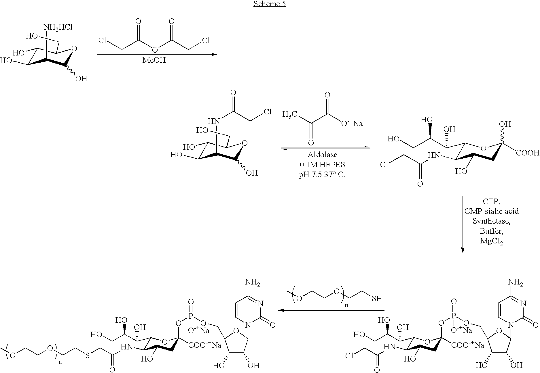 Figure US07173003-20070206-C00104