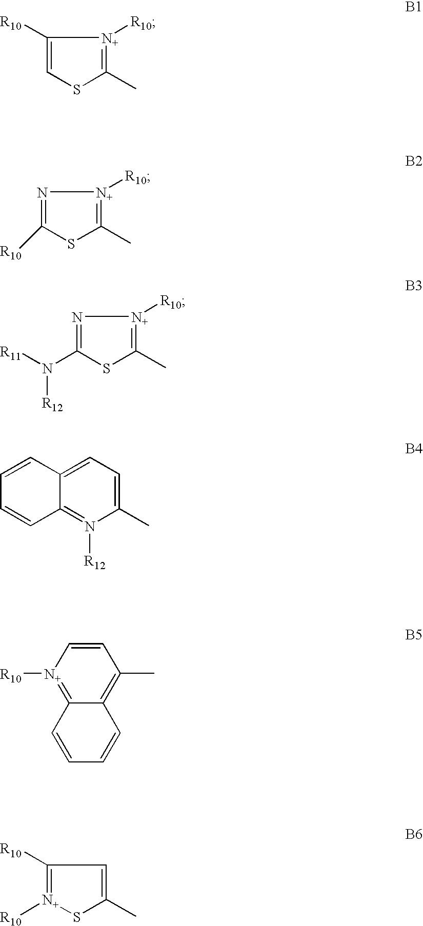 Figure US20090158533A1-20090625-C00009