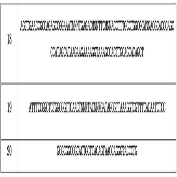 Figure 112015016356472-pct00002