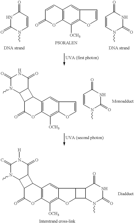 Figure US06235508-20010522-C00001