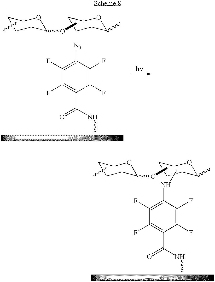 Figure US20100028559A1-20100204-C00010