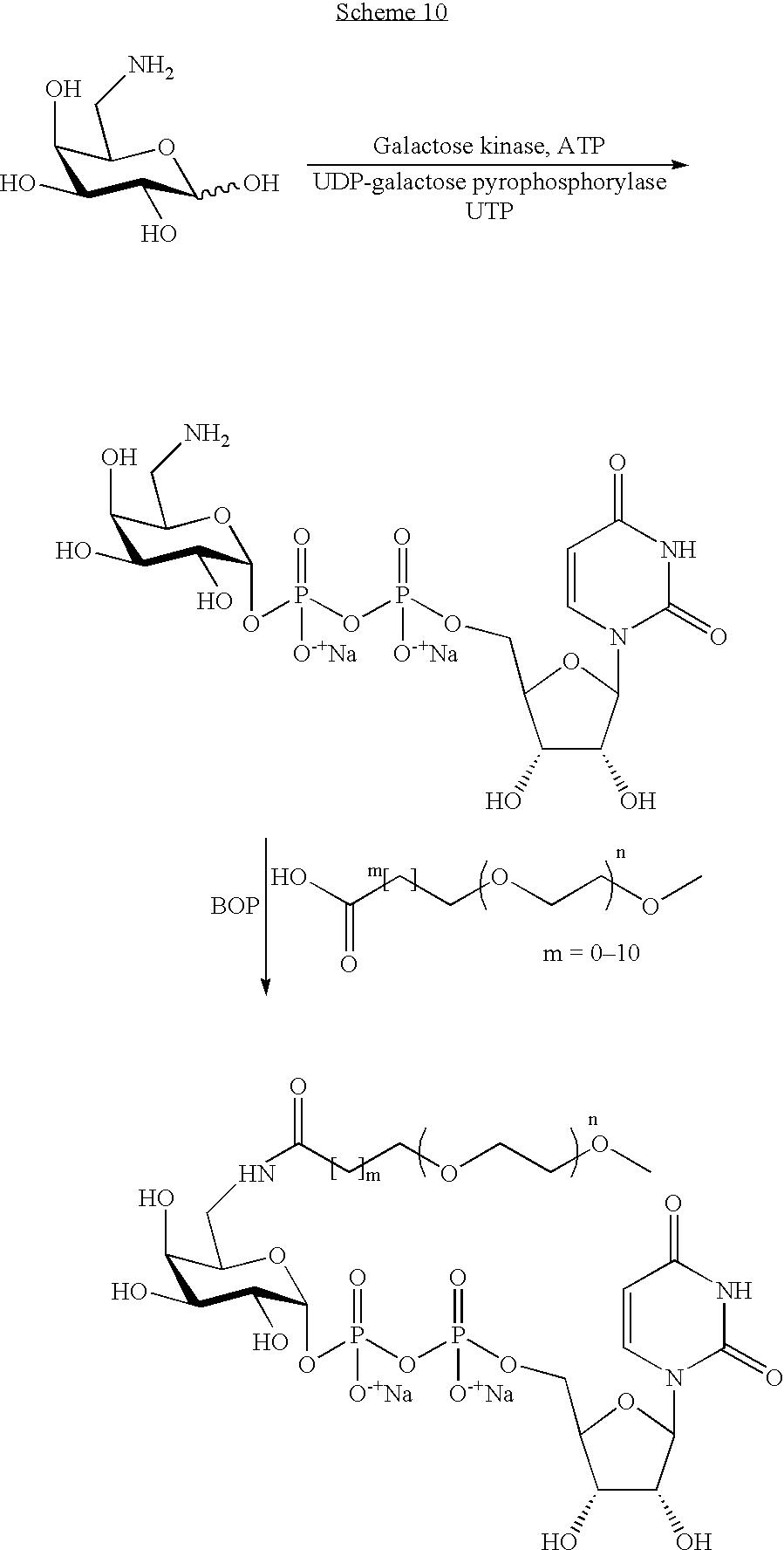 Figure US07173003-20070206-C00109