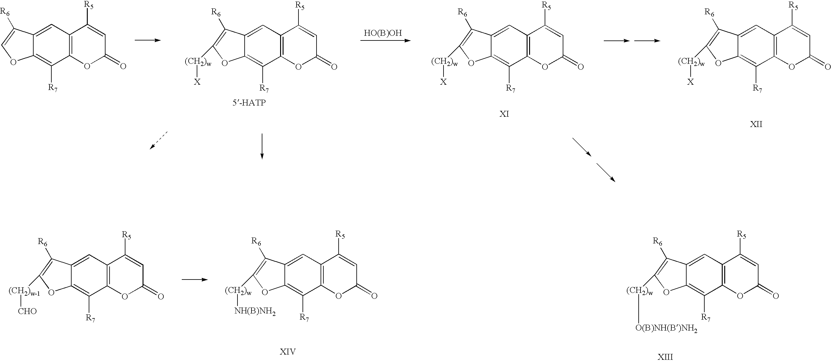 Figure US06686480-20040203-C00005