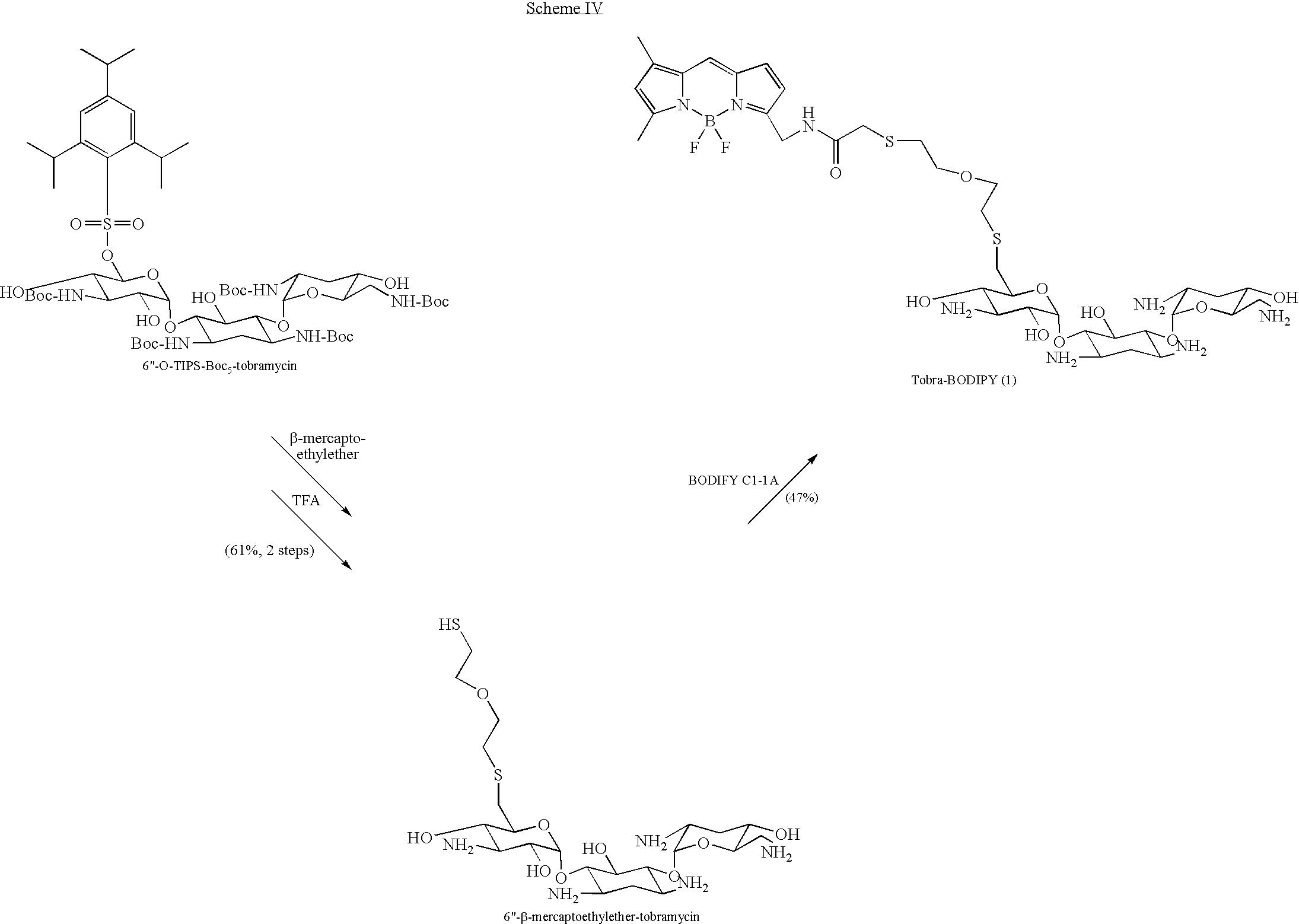 Figure US08071535-20111206-C00008