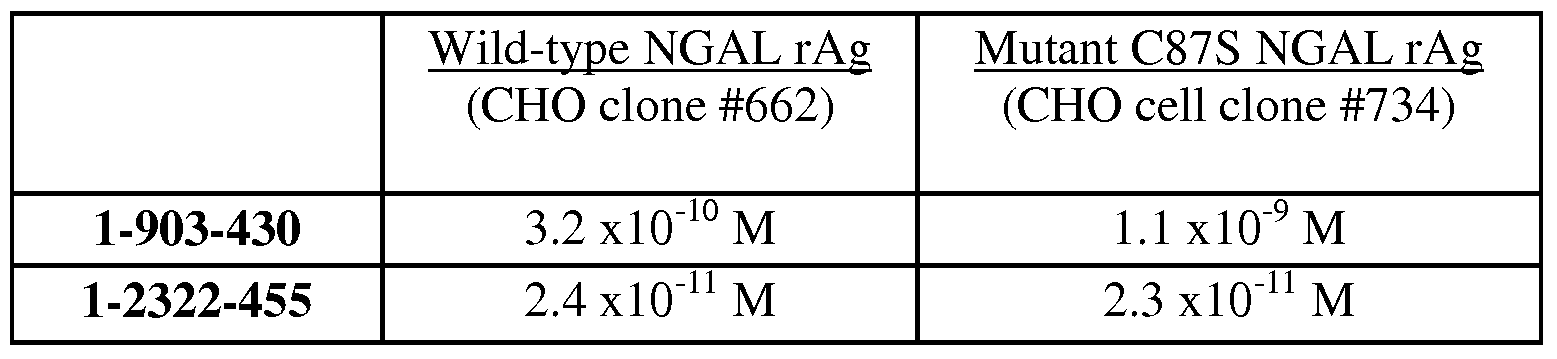 WO2009052400A1 - Antibodies that bind to mammalian ngal and uses