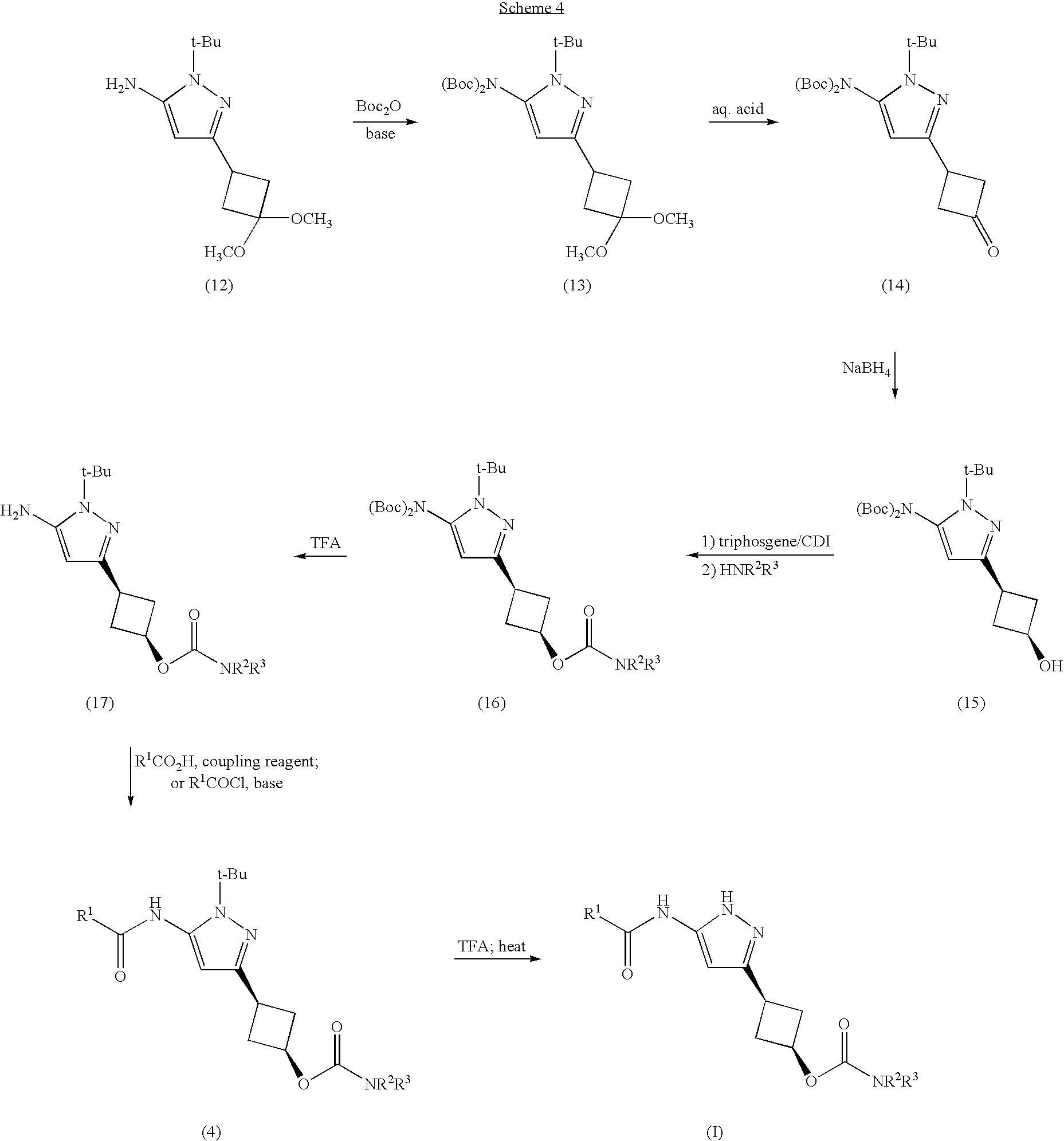 Figure US20070276010A1-20071129-C00008