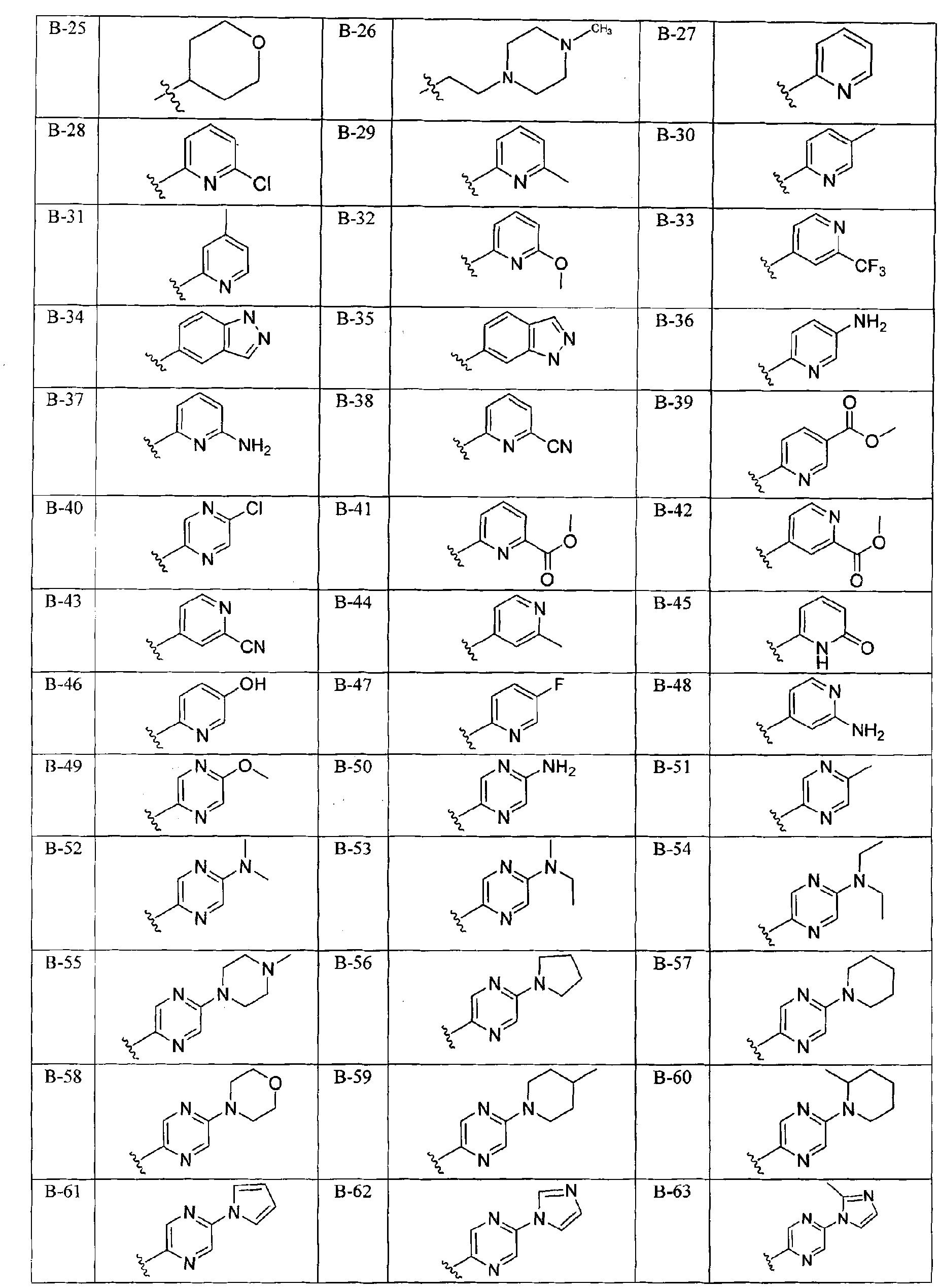 Figure CN101965335BD00452