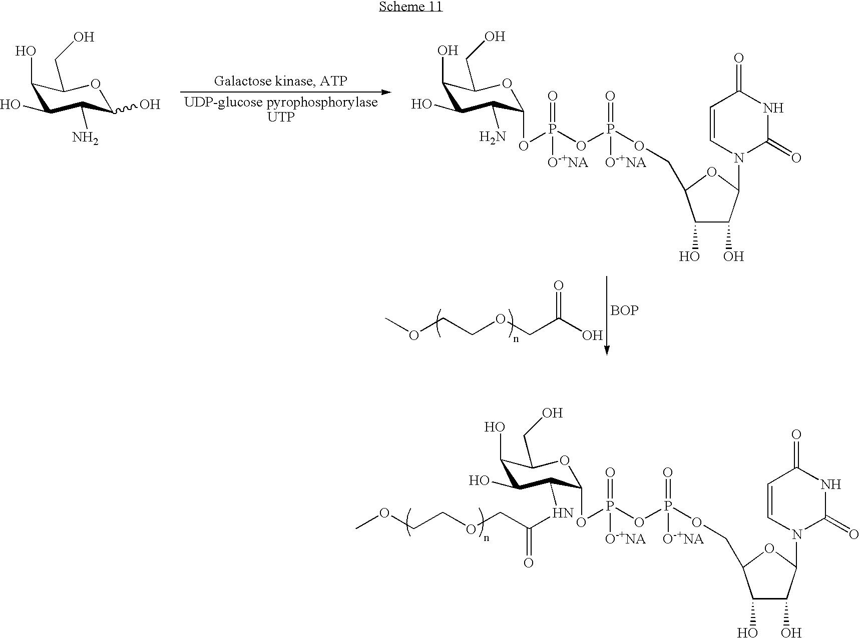 Figure US07439043-20081021-C00103