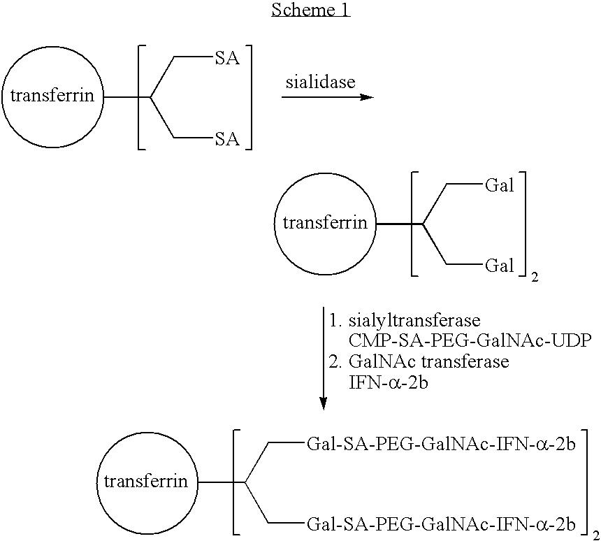 Figure US20050250678A1-20051110-C00010