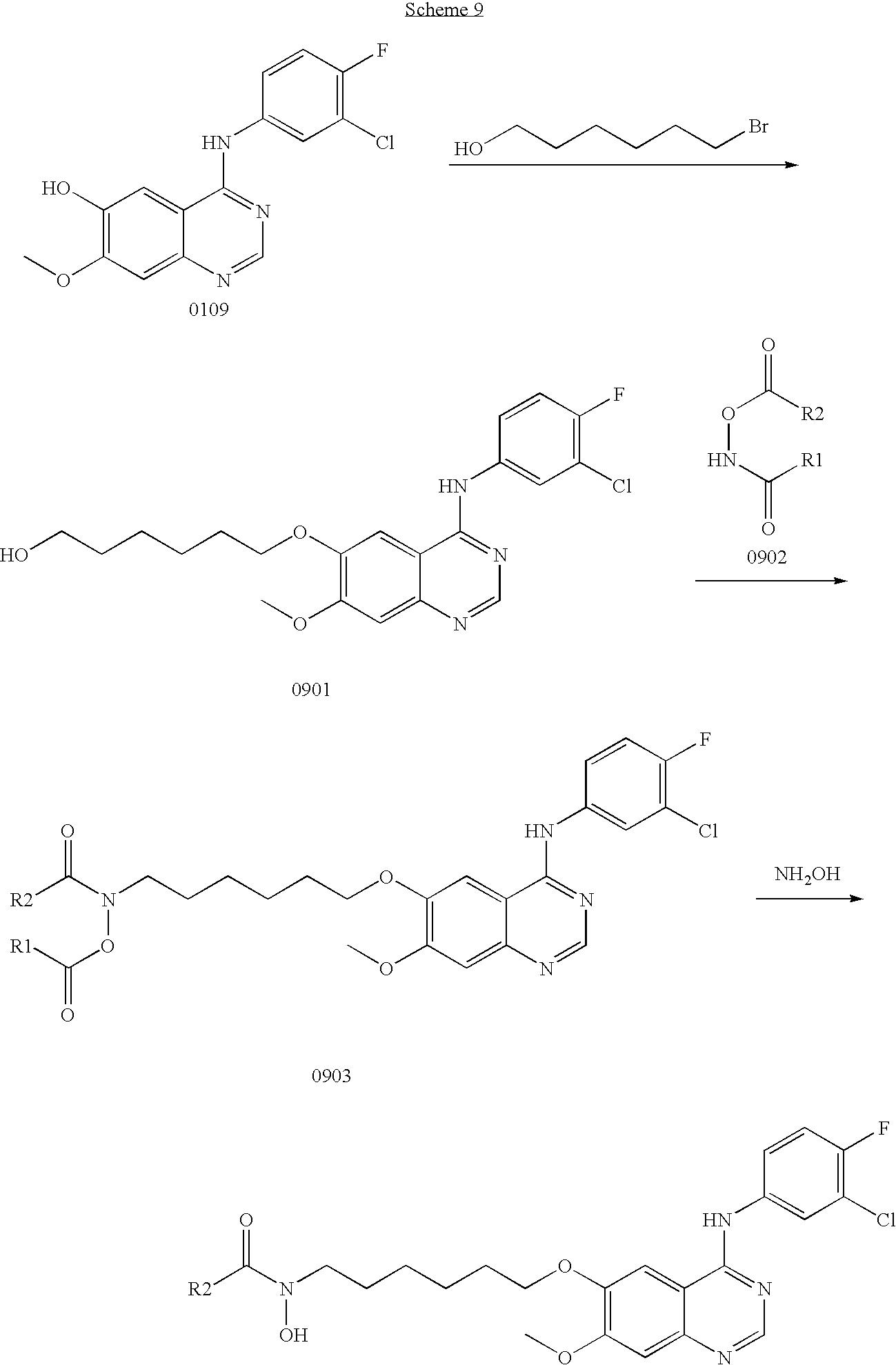 Figure US20090111772A1-20090430-C00231
