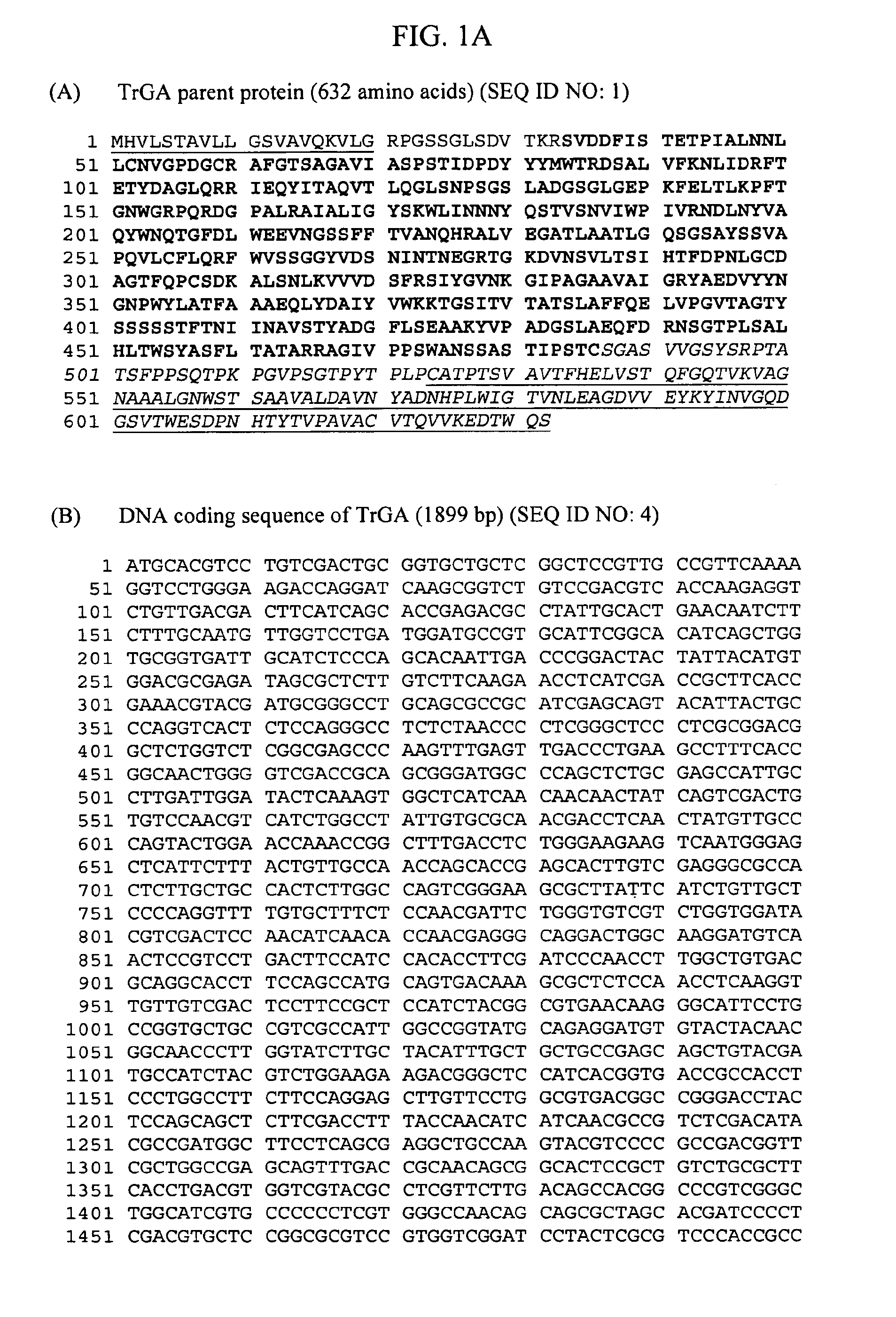 US8551755B2 - Glucoamylase variants - Google Patents