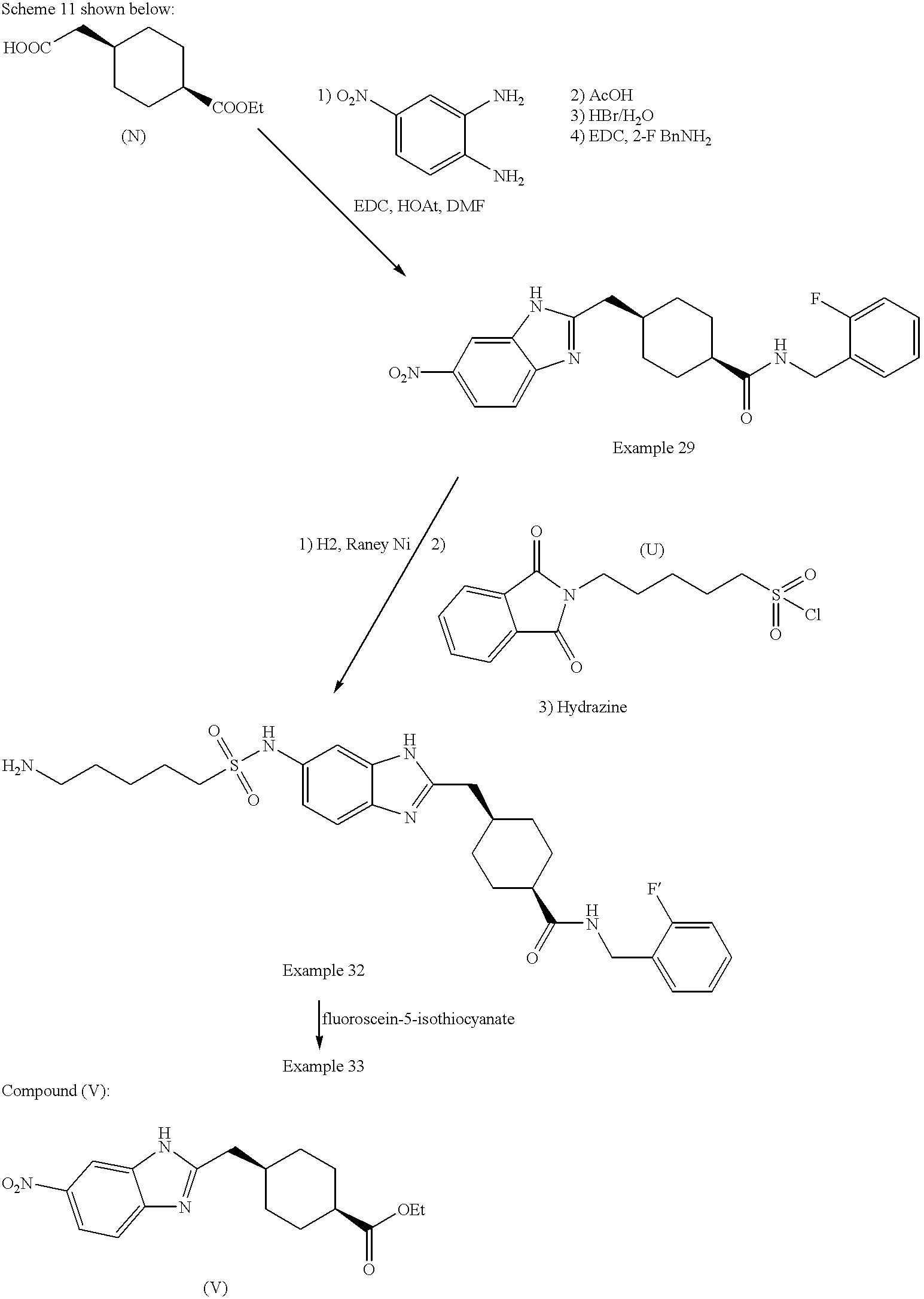 Figure US20020055519A1-20020509-C00072