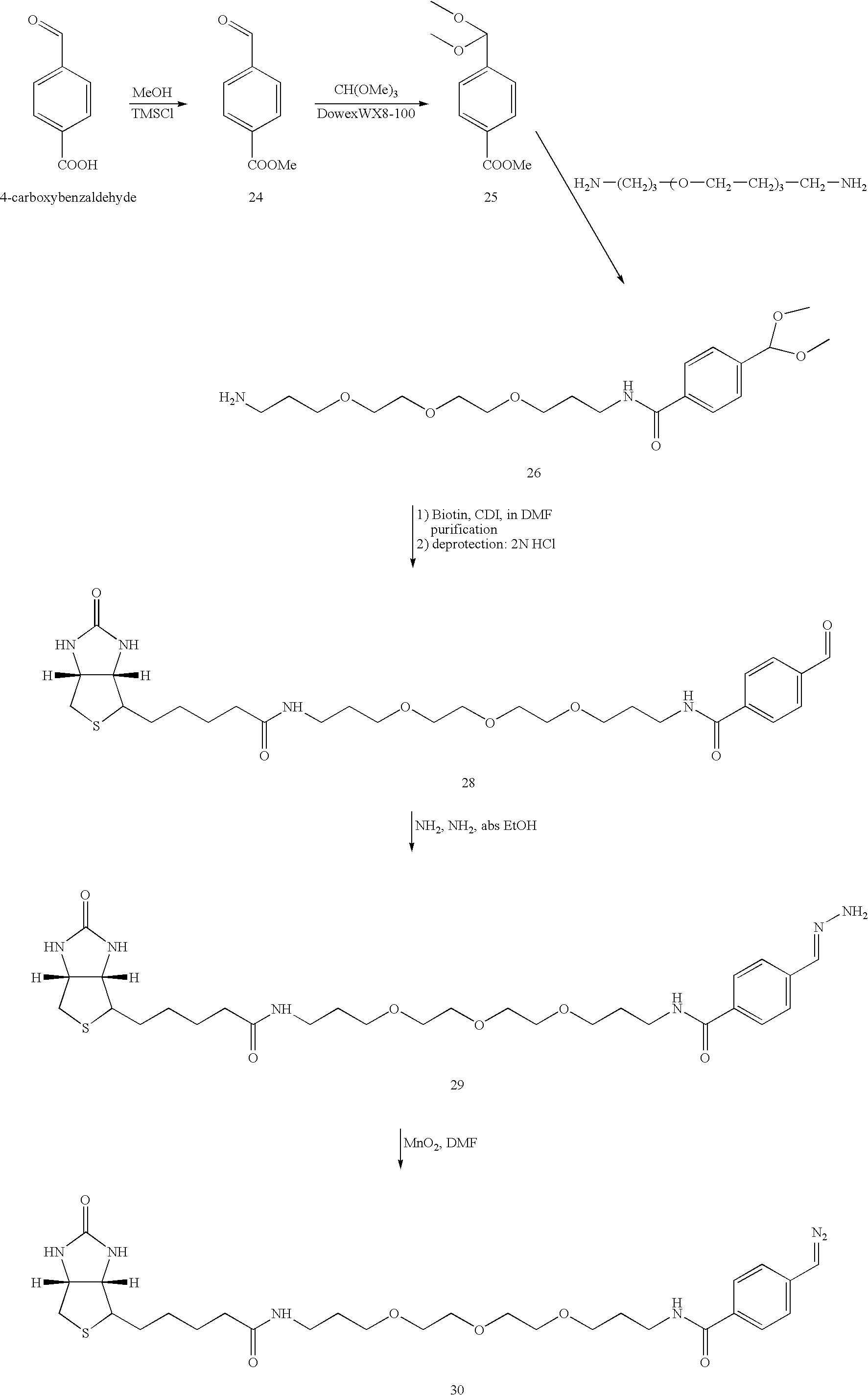 Figure US07060441-20060613-C00039