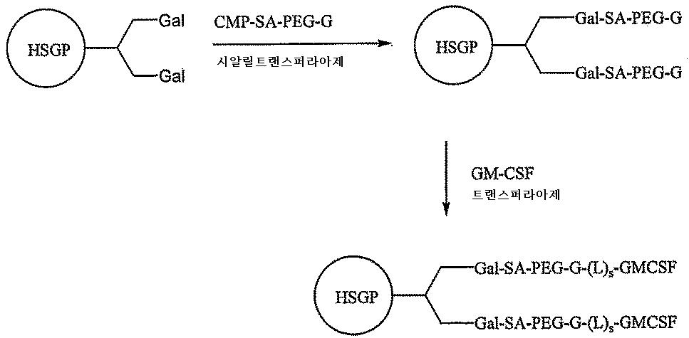 Figure 112009081596686-pct00154