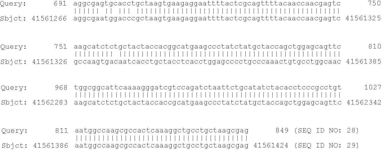 Figure US20100160174A1-20100624-C00020