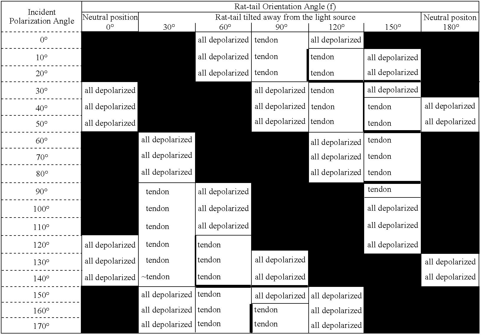 Figure US07289211-20071030-C00001