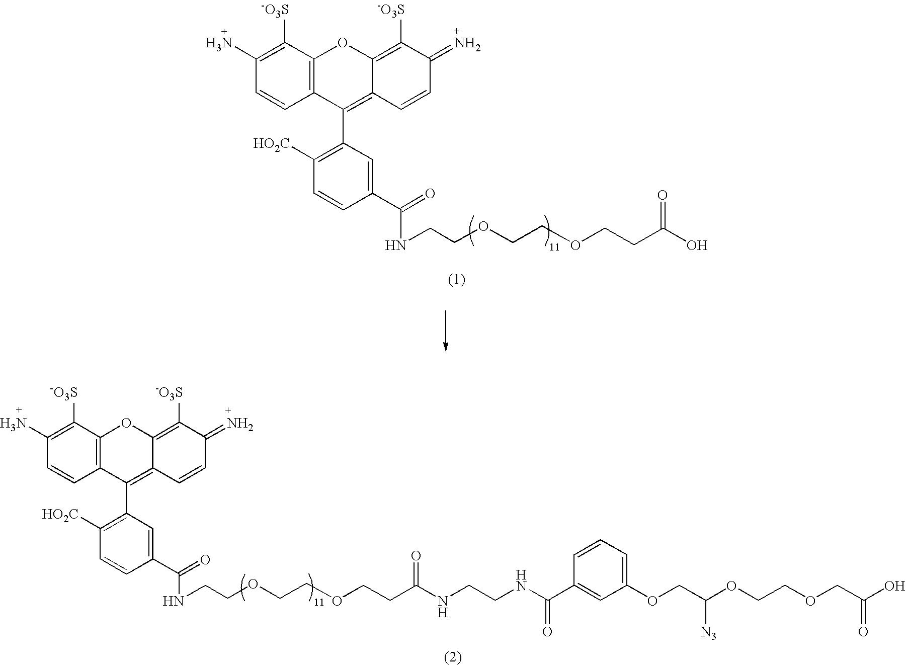 Figure US07816503-20101019-C00002
