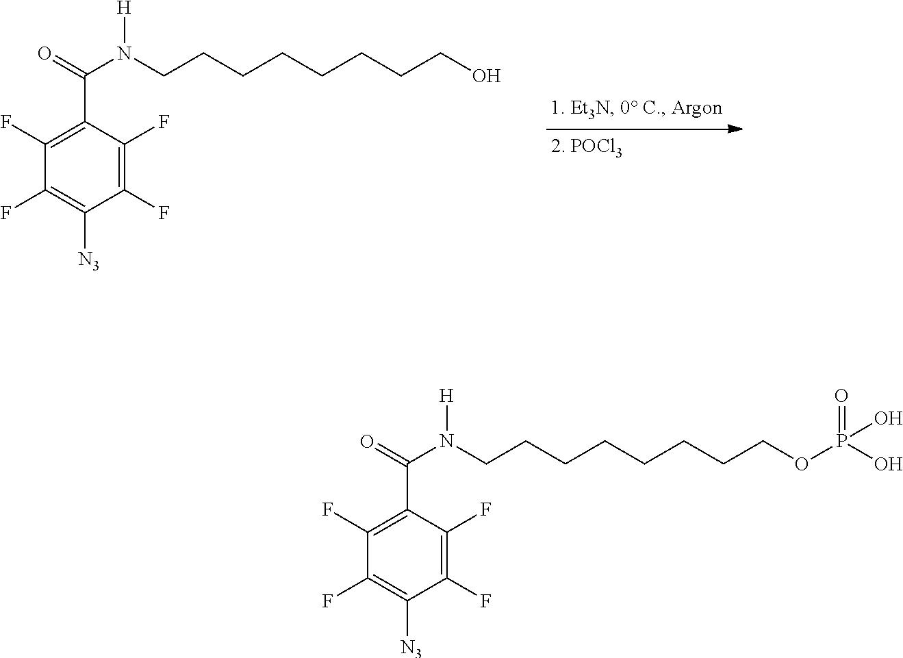 Figure US20100028559A1-20100204-C00008