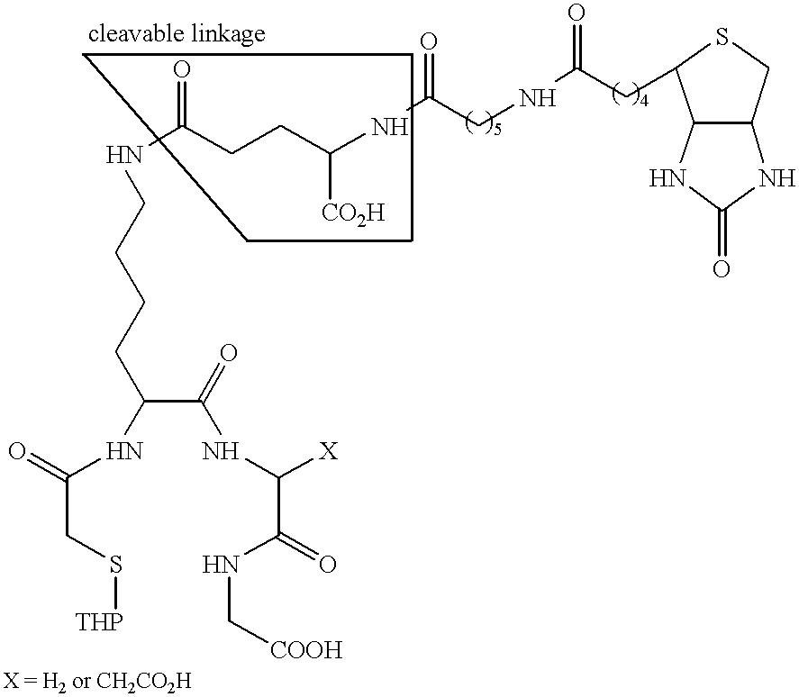 Figure US06217869-20010417-C00013