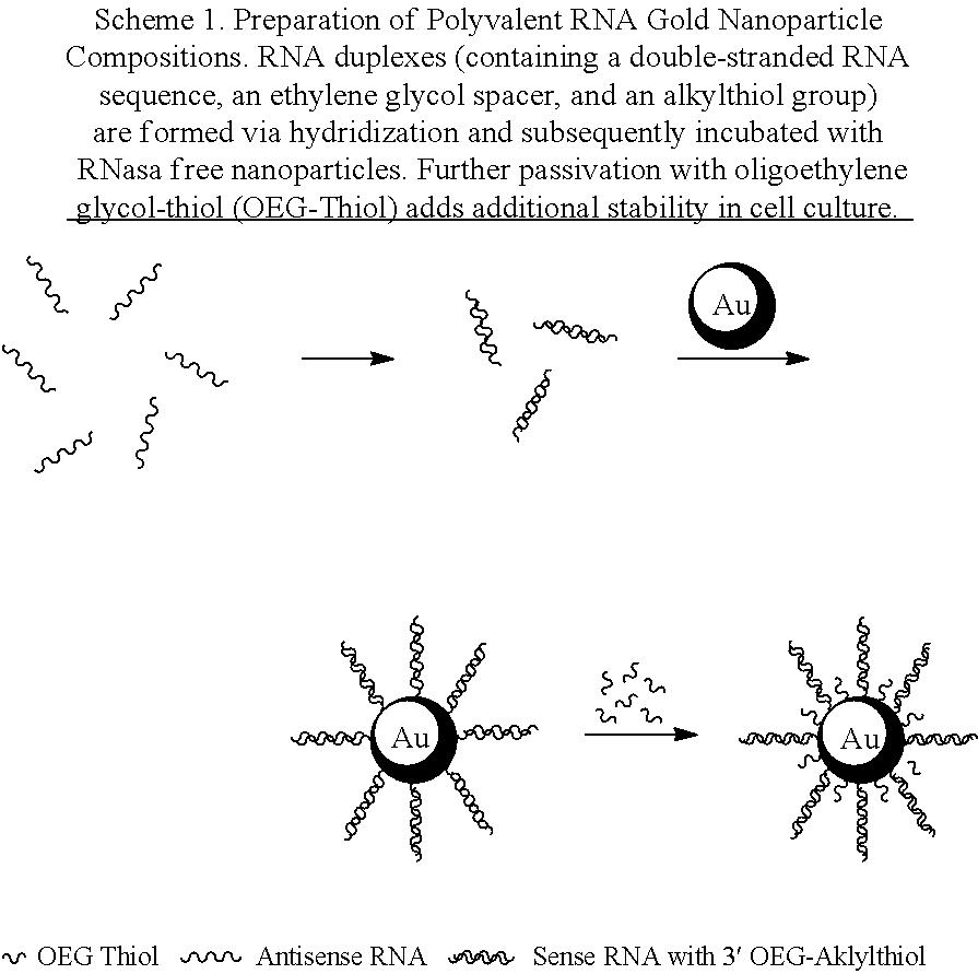 Figure US09844562-20171219-C00001