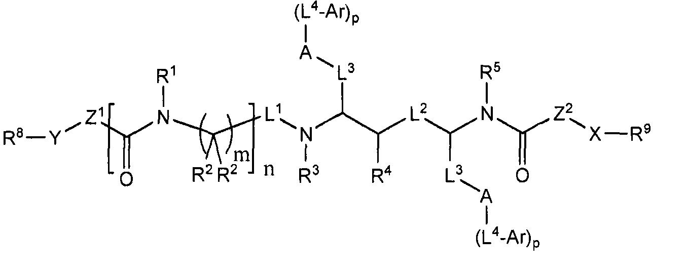 Figure CN101490023BD00161