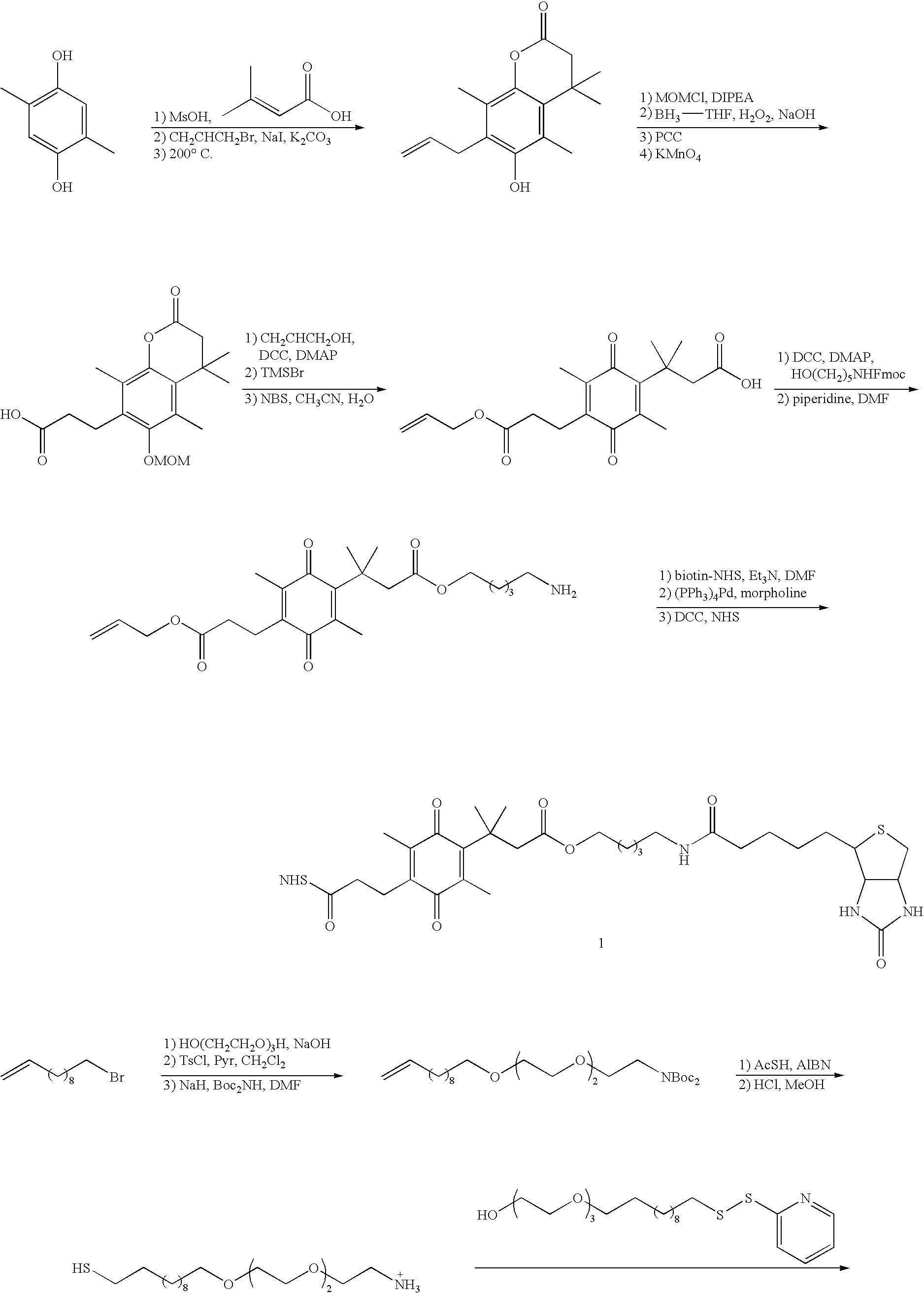 US6764768B2 - Controlled release composition - Google Patents