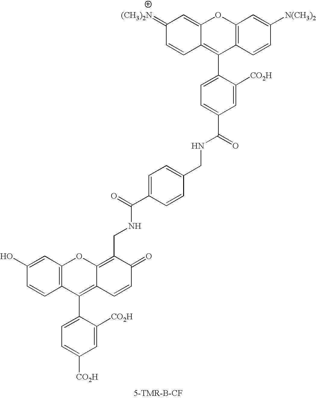 Figure US20070154926A1-20070705-C00117