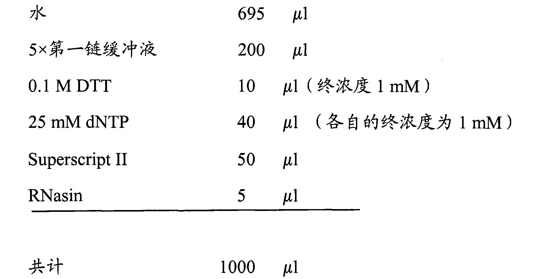 Figure CN102177438AD00481