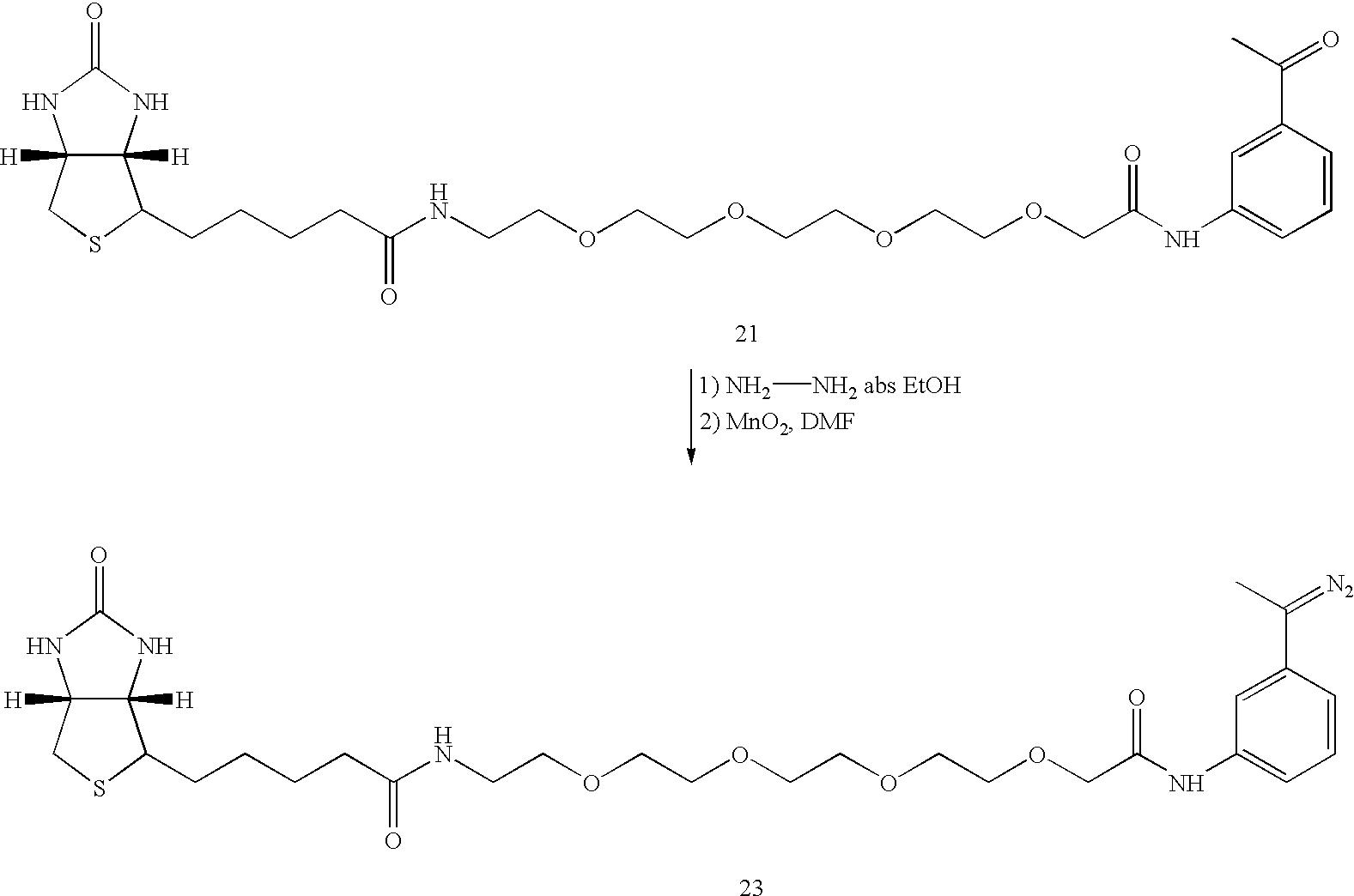 Figure US07060441-20060613-C00042