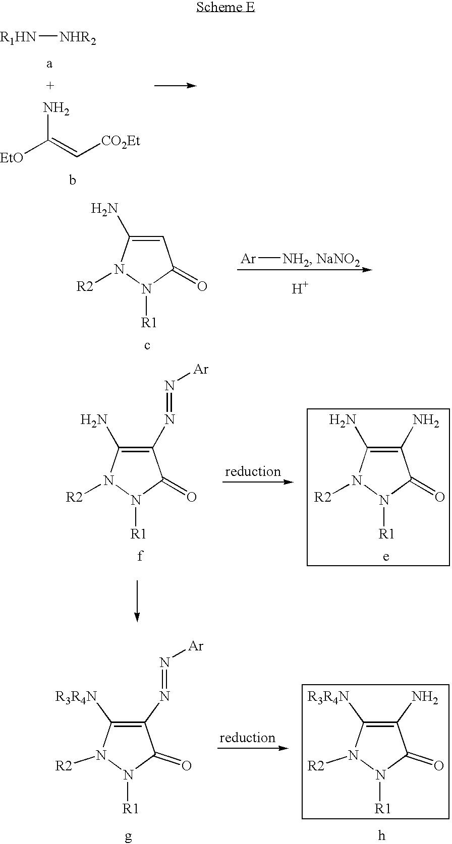 Figure US07488356-20090210-C00031
