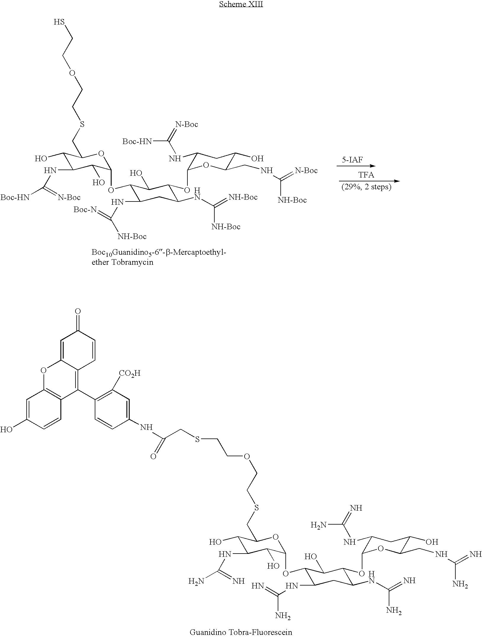 Figure US08071535-20111206-C00017