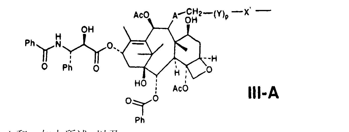 Figure CN101019024BD00081