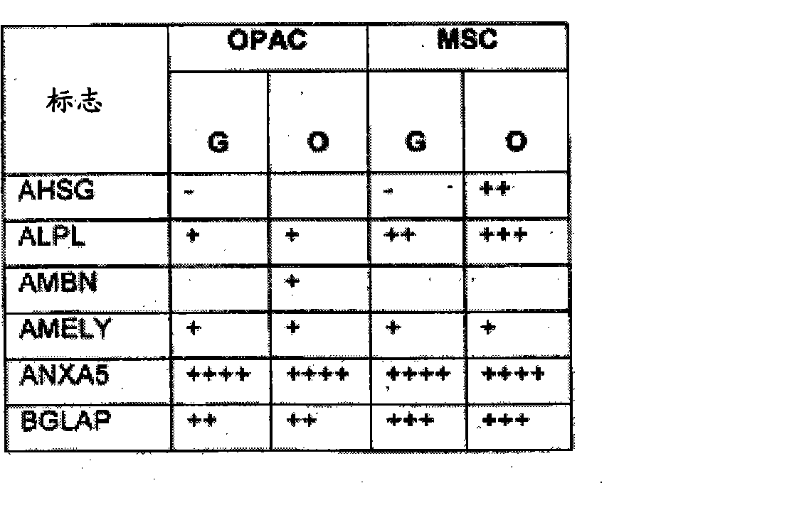 Figure CN102176919AD00582