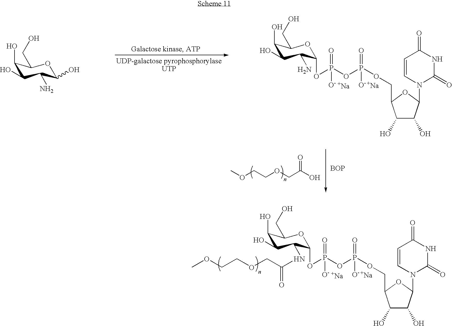 Figure US08008252-20110830-C00112