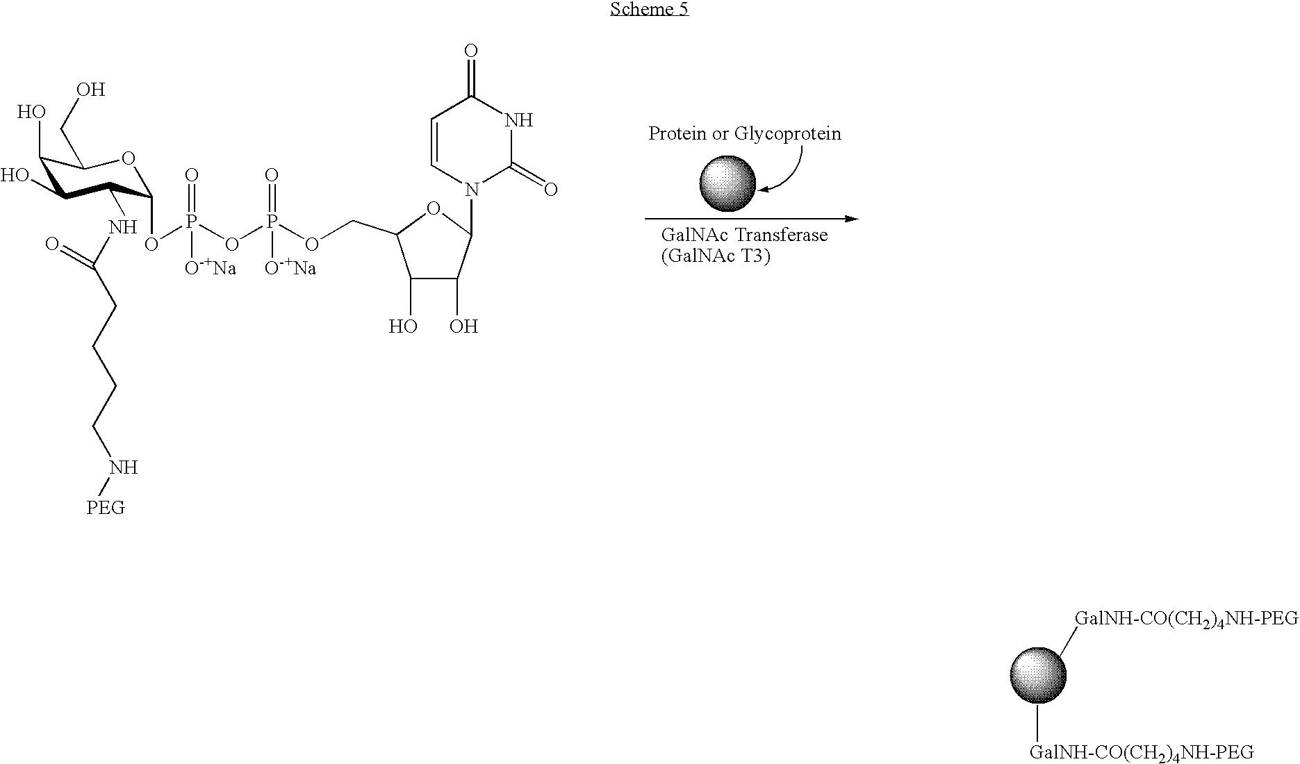 Figure US07803777-20100928-C00051