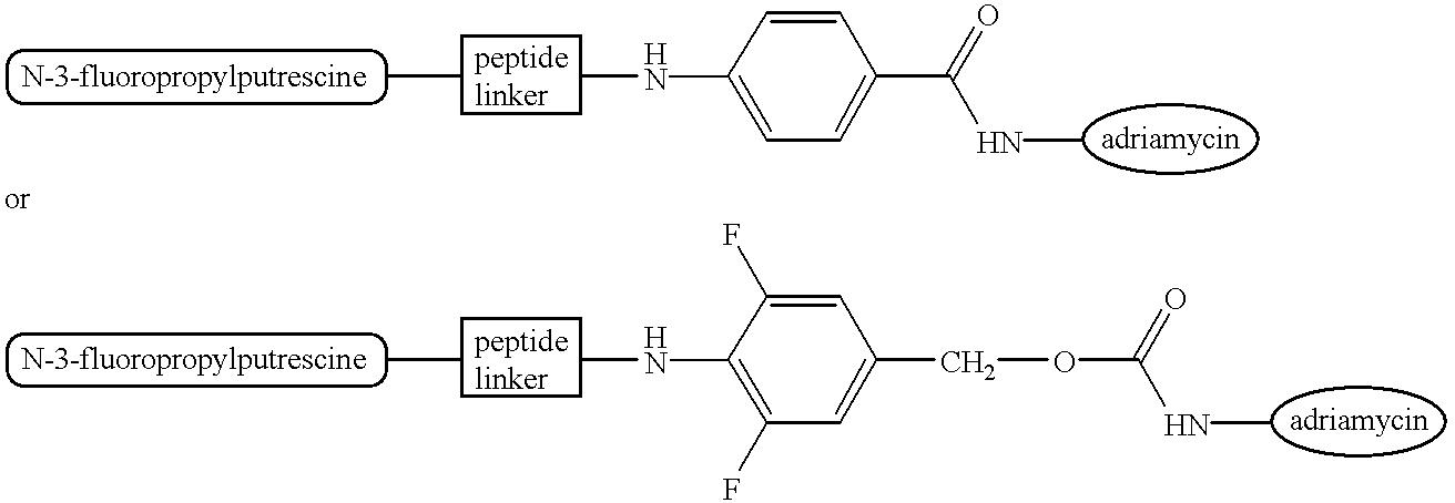 Figure US06368598-20020409-C00006