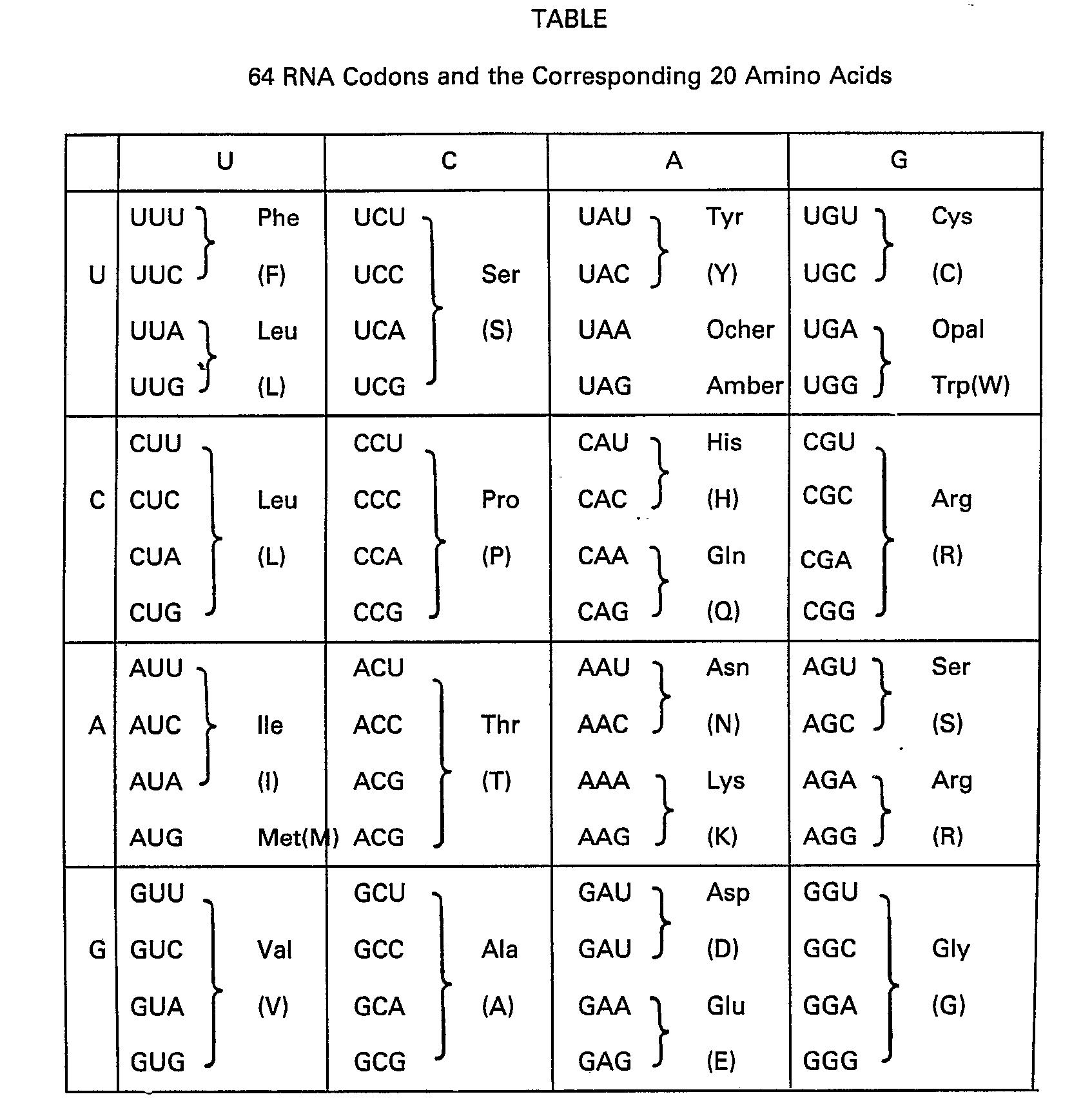 Ep0175960b1 Tetrahedral Codon Stereo Table Google Patents