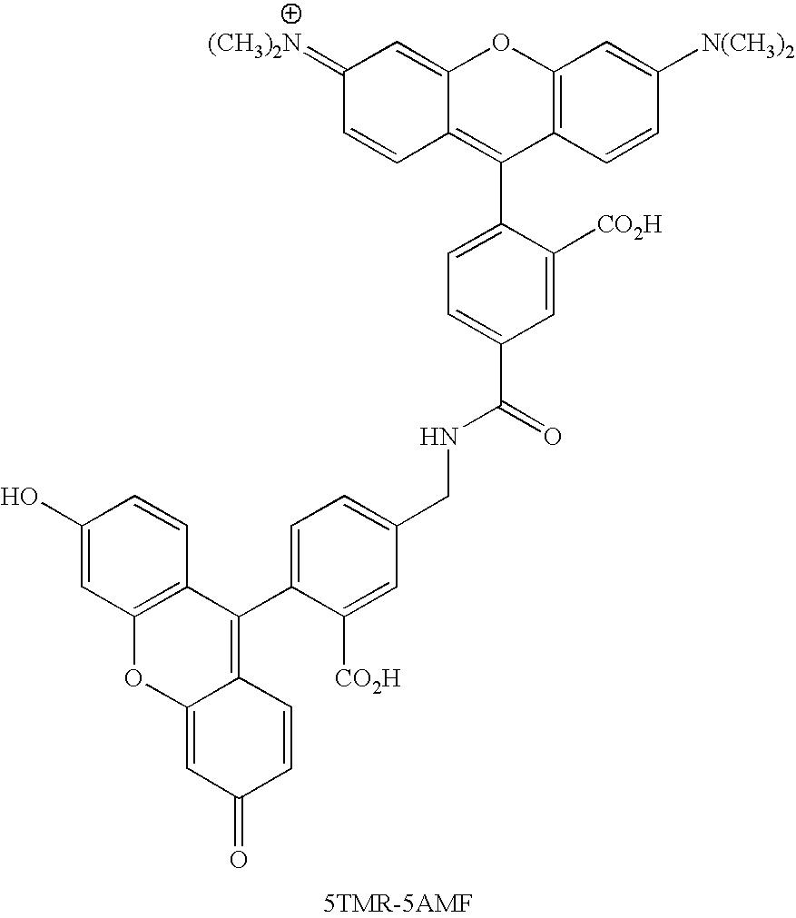 Figure US20070154926A1-20070705-C00078
